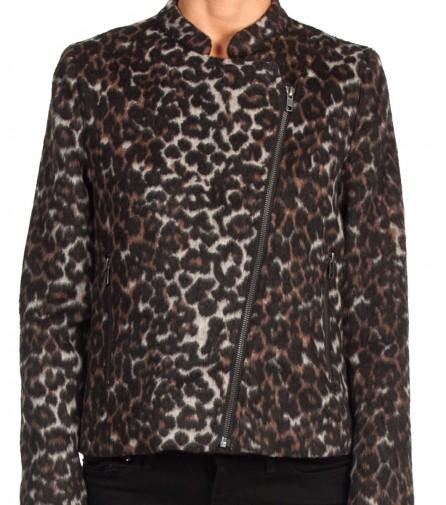 front_leopard