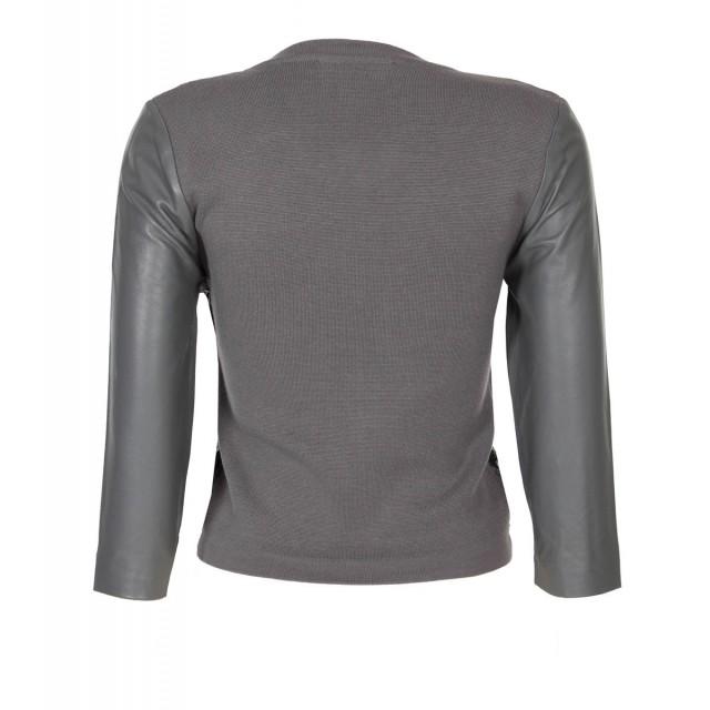 back_grey