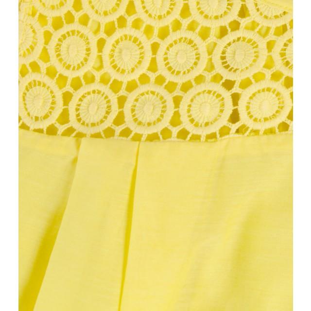 detail_lemon