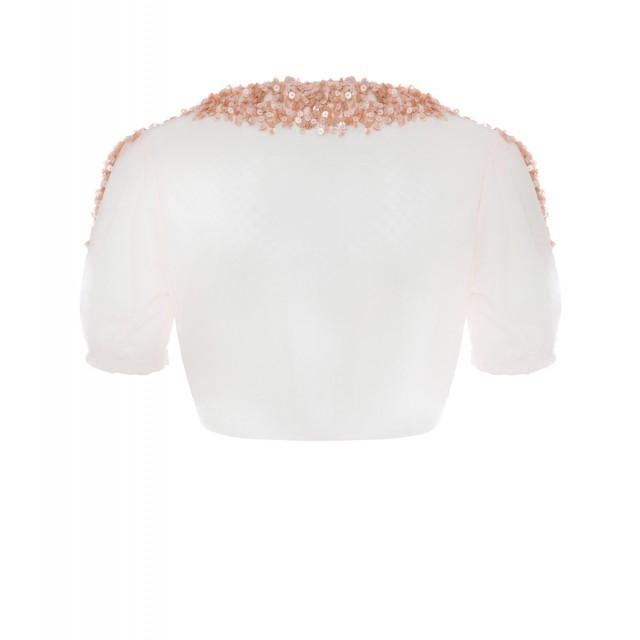 back_pale-pink