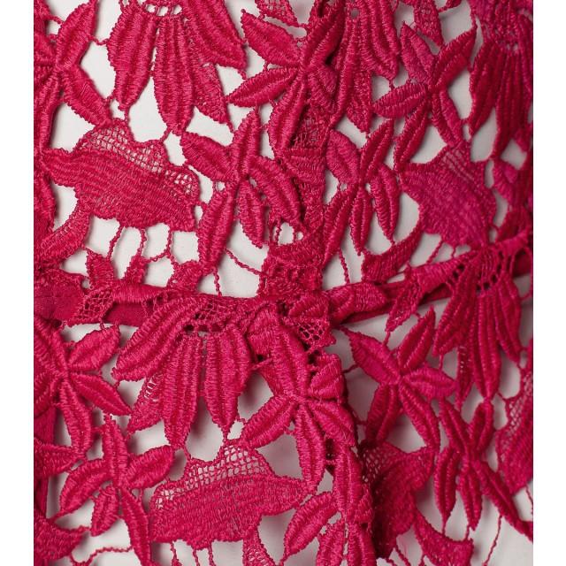 detail_raspberry