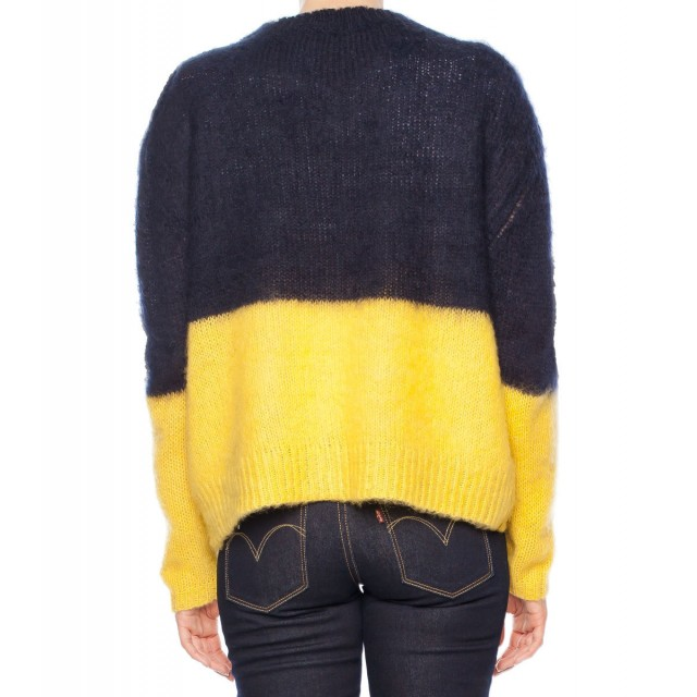 back_navy-yellow