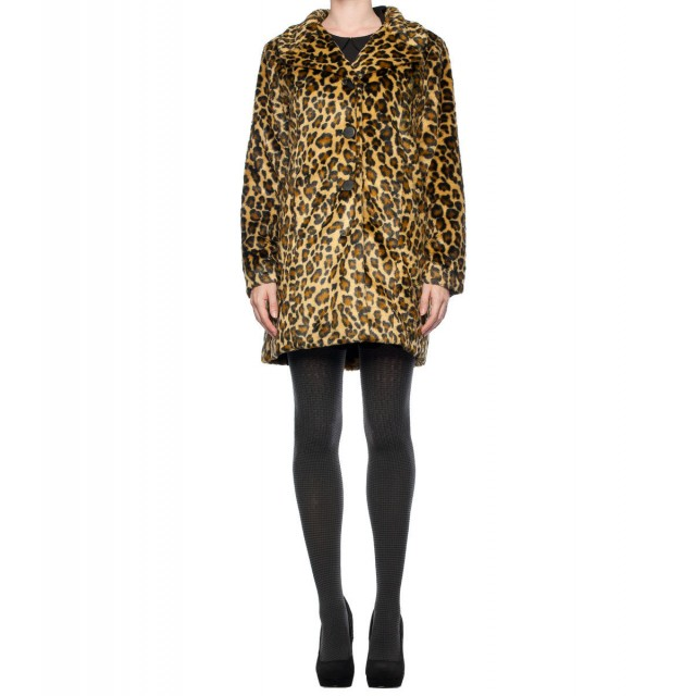 inside 1_leopard